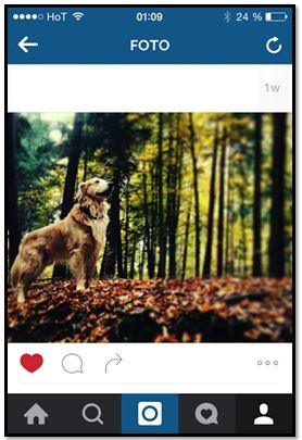 Vom Instagram-Foto zum Ölgemälde als eigene Kunst