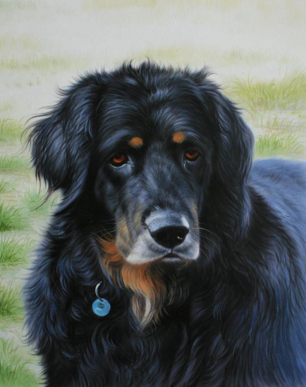 Ölgemälde vom Hund als Reproduktion von einem Foto - Tierportrait