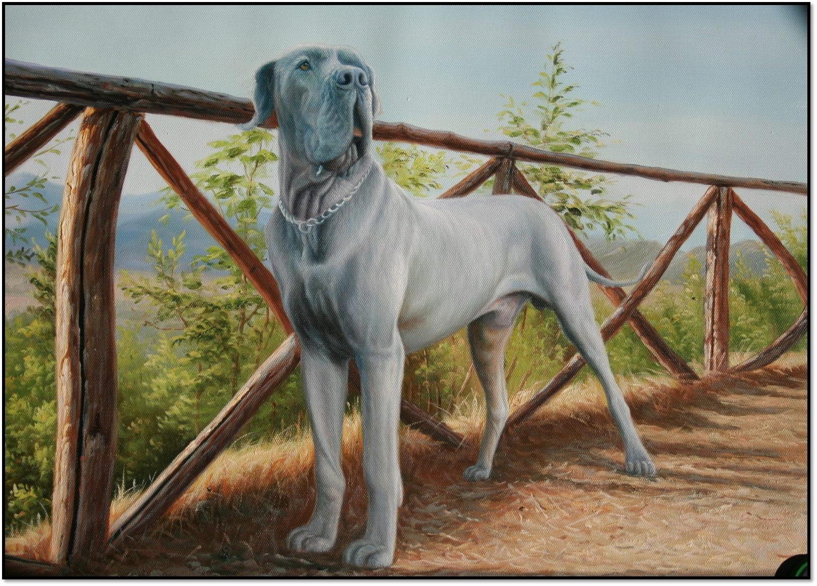 oelgemaelde tierportrait - reproduktion hund